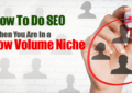 How To Do SEO When You Are In a Low Volume Niche